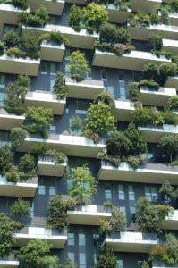 Die Stadt der Zukunft? - Hühner und Bäume am Balkon