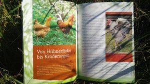 Stolze Hähne und fleißige Henen Innenansicht